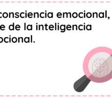 La Consciencia Emocional